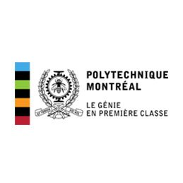 polytechnique_montreal_Iceberg_management